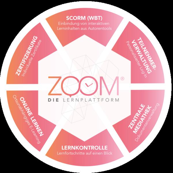 Zoom- Infografik