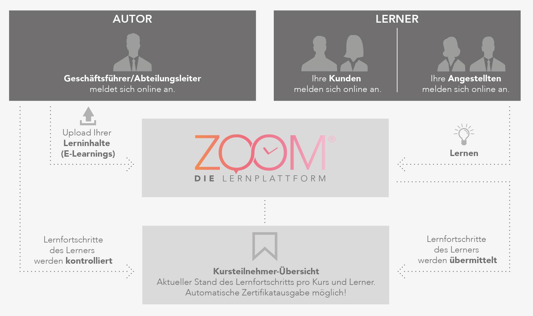 Zoom- Infografik - Autor Lerner