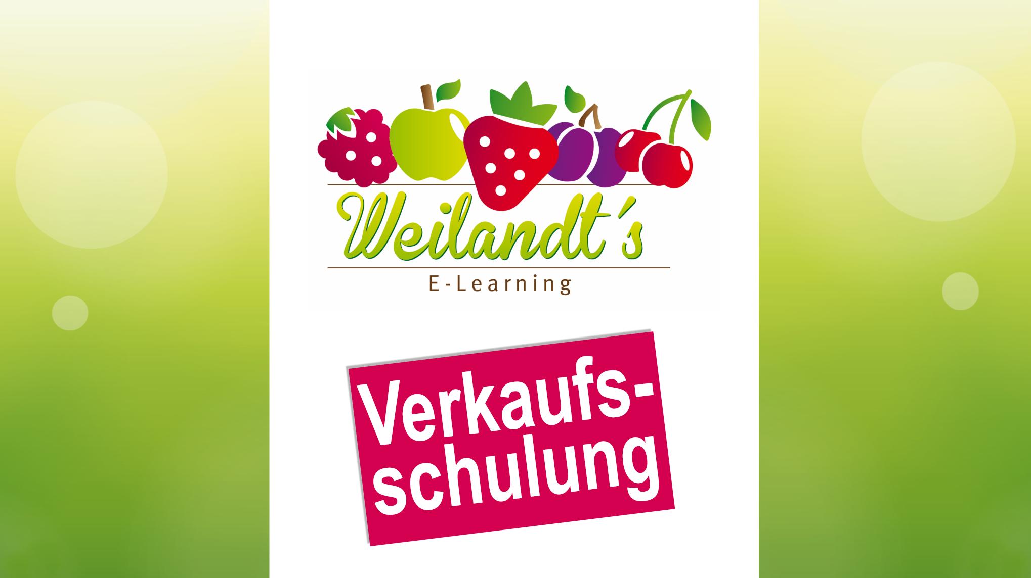 Verkaufsschulung Beispiel E-Learning